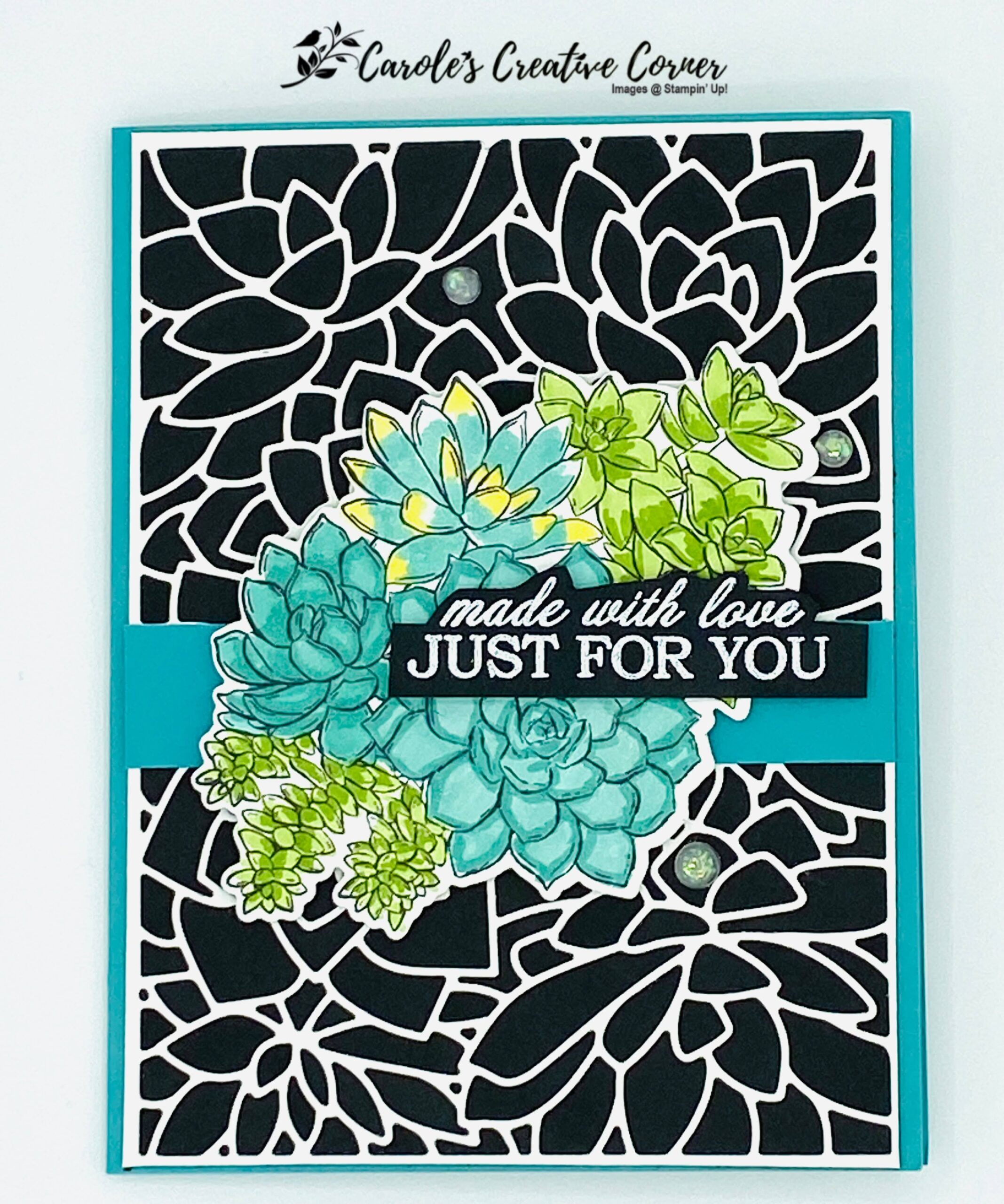 Simply Succulents Just for You Card